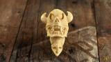 Eagle & Viking Skull